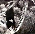 Rolf Hind (Ligeti, Martland, Messiaen, Carter)